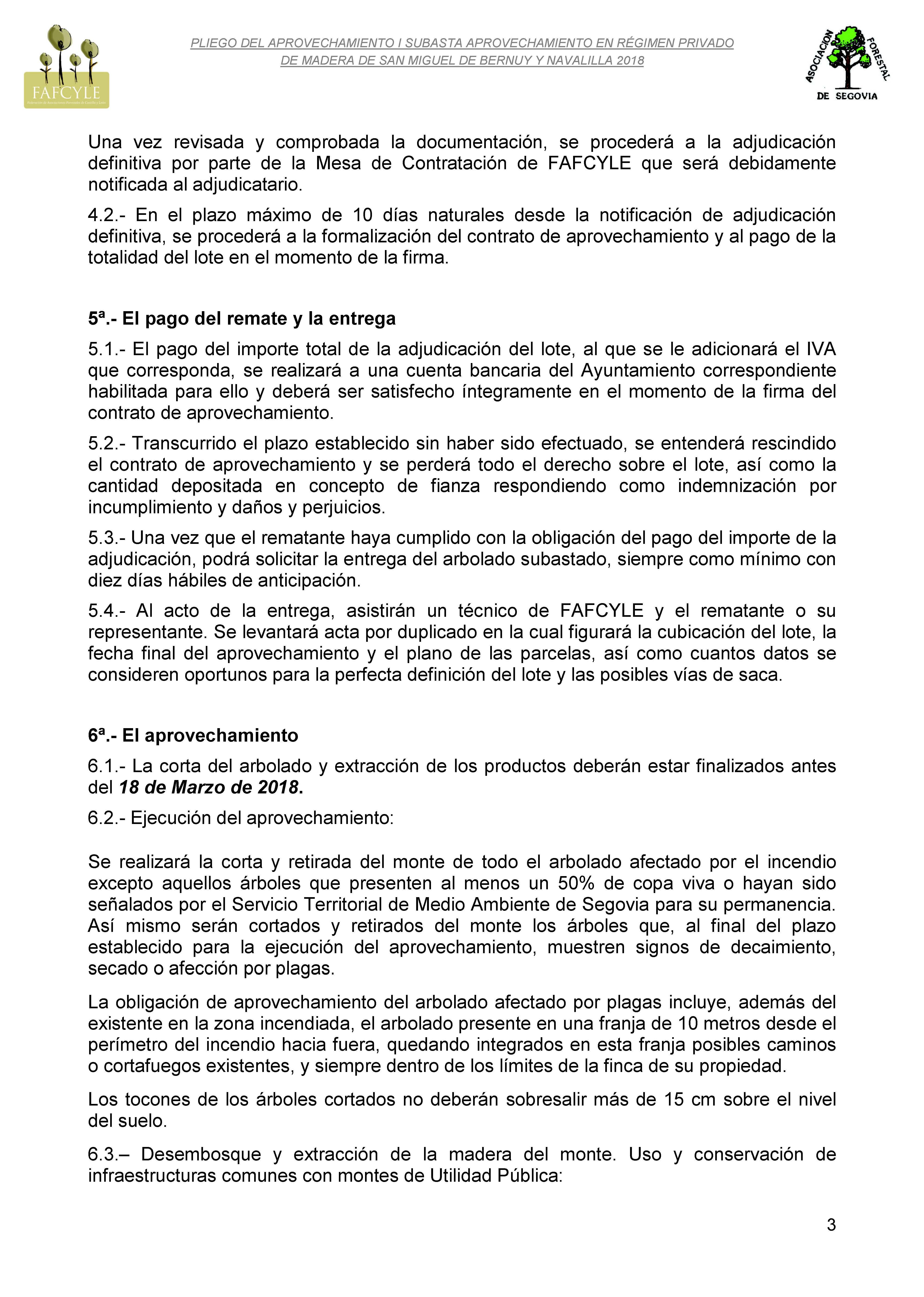 Pliego de aprovechamiento San Miguel de Bernuy y Navalilla_Página_3