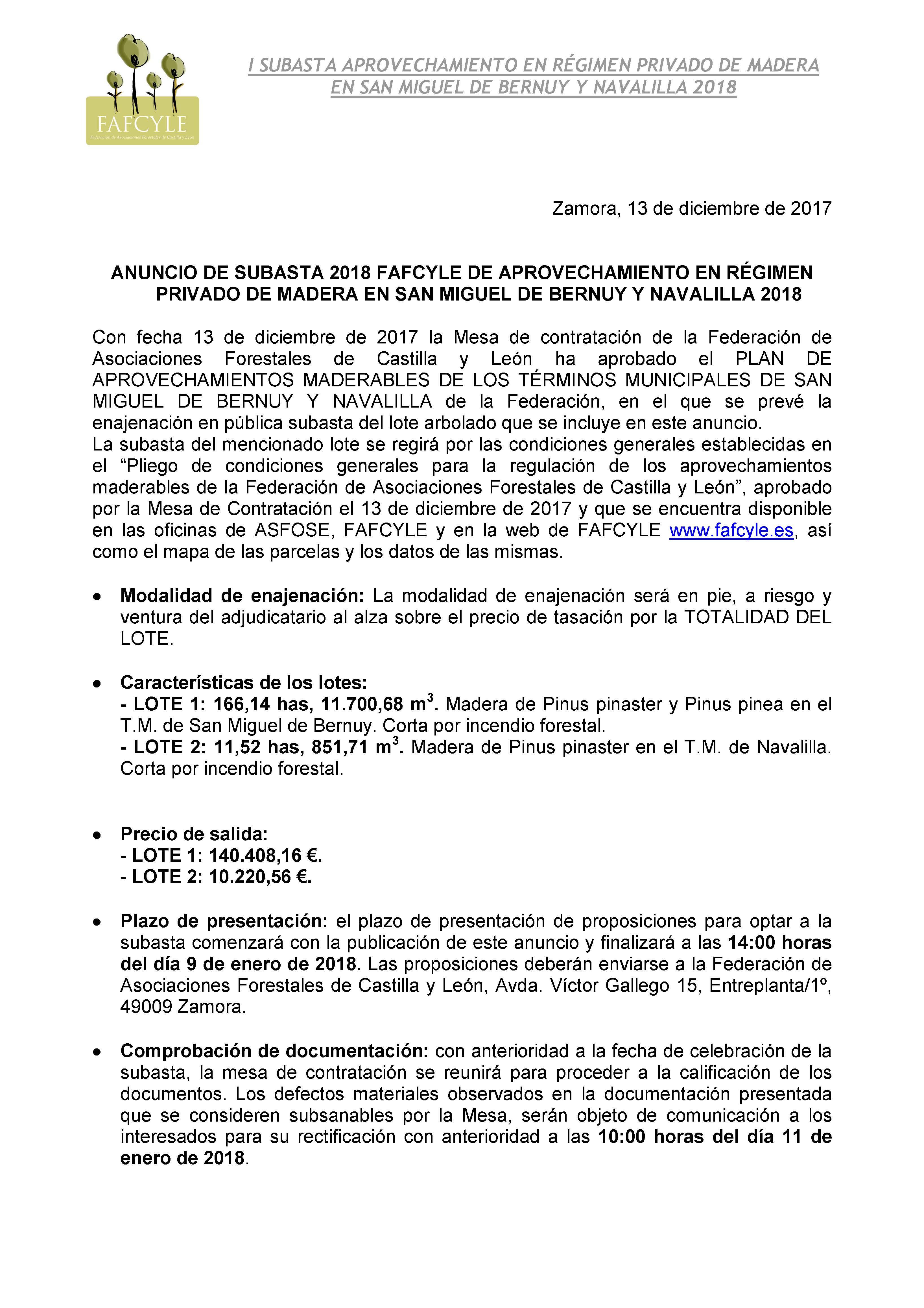 anuncio subasta 2018 San Miguel de Bernuy y Navalilla_Página_1