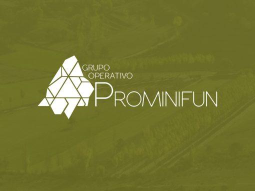 Grupo Operativo PROMINIFUN