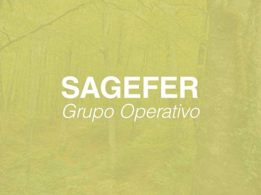 Grupo Operativo SAGEFER