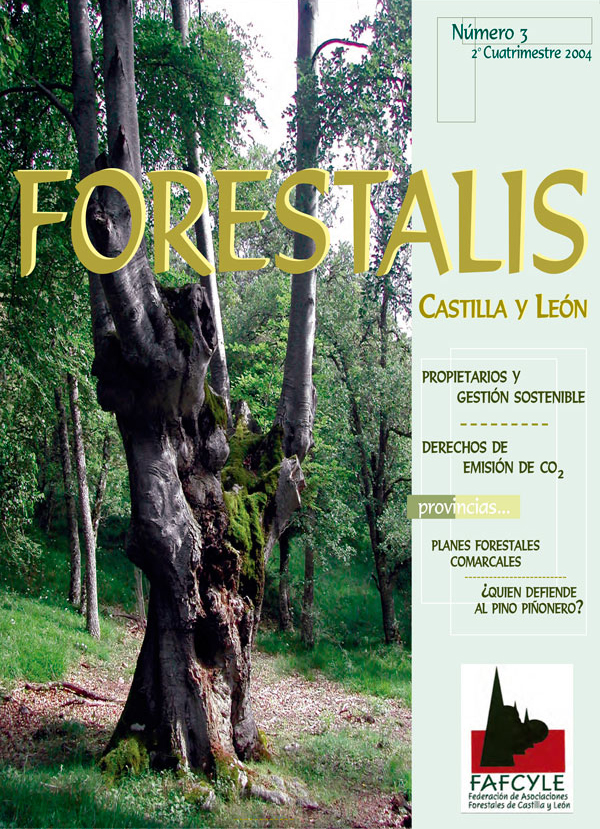 Revista Forestalis Nº 3