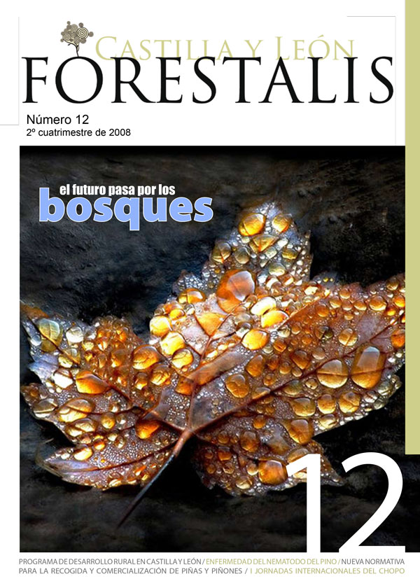 Revista Forestalis Nº 12