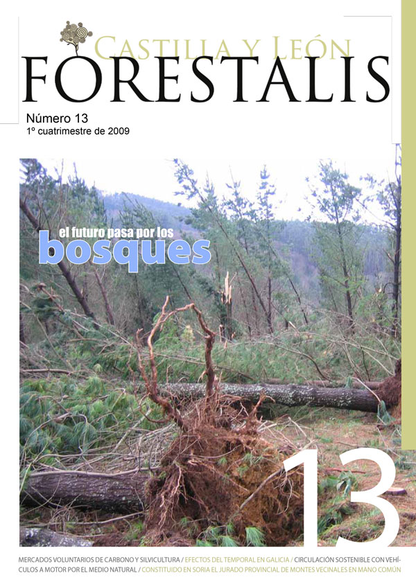 Revista Forestalis Nº 13