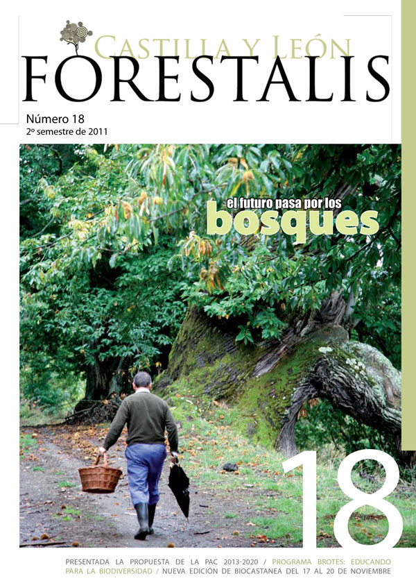 Revista Forestalis Nº 18