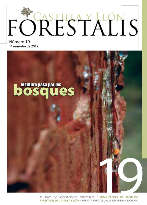 Revista Forestalis Nº 19