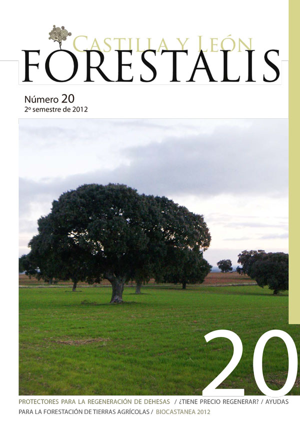 Revista Forestalis Nº 20