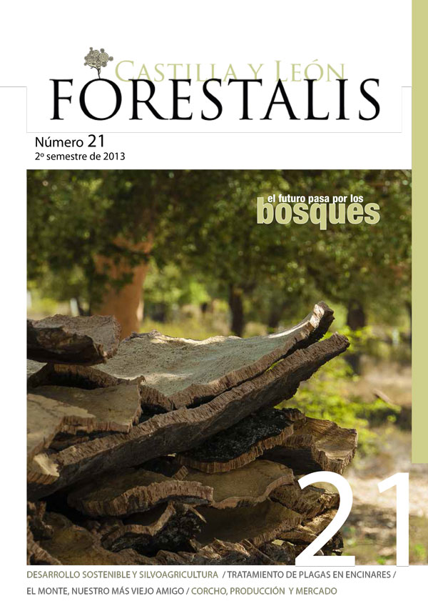 Revista Forestalis Nº 21