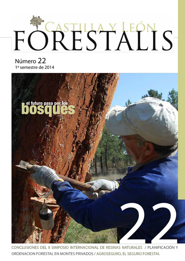 Revista Forestalis Nº 22