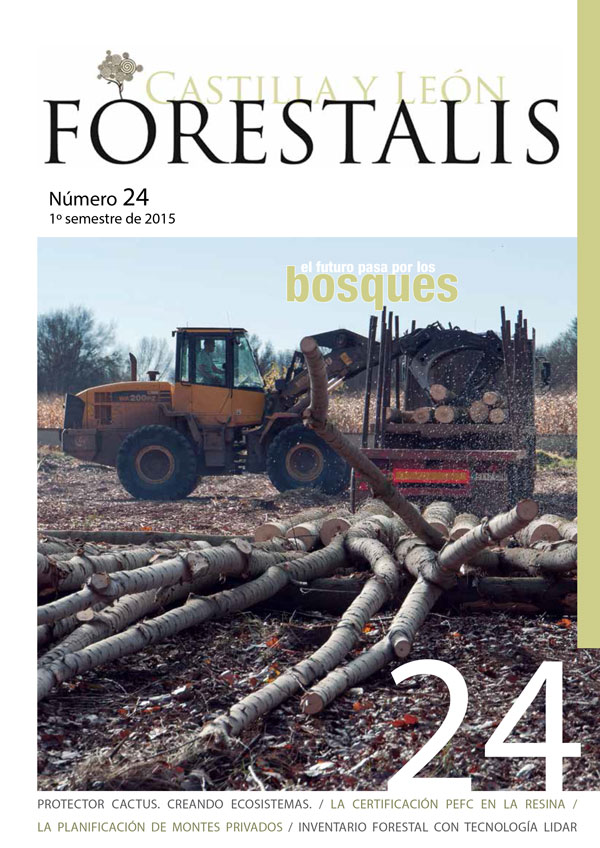 Revista Forestalis Nº 24