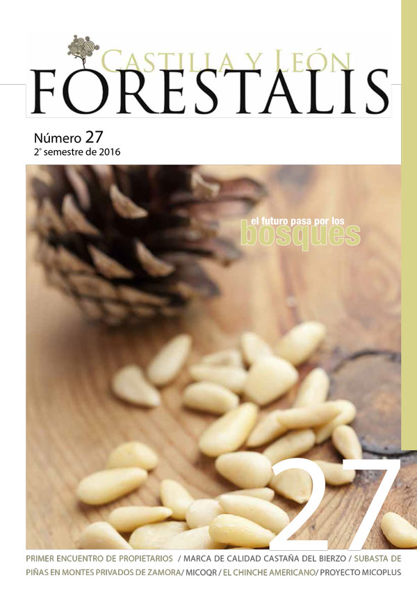 Revista Forestalis Nº 27