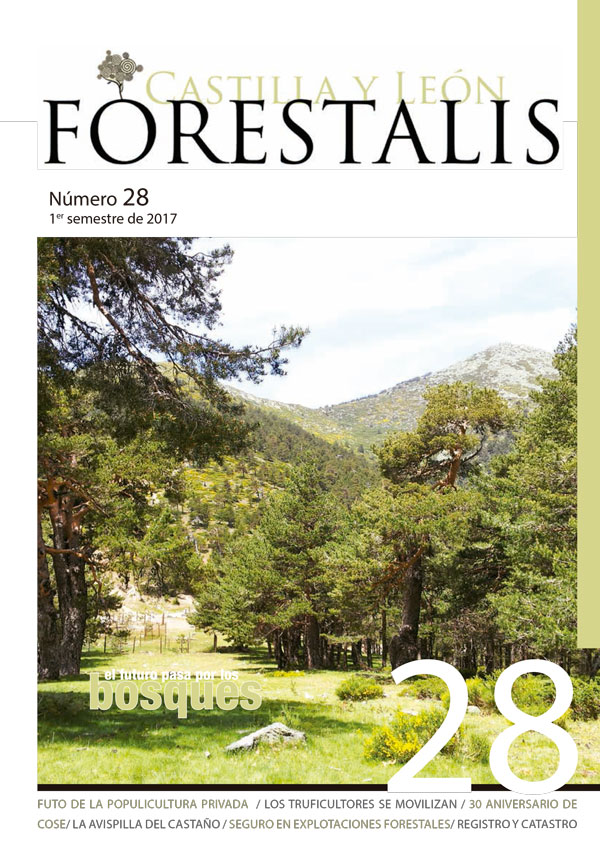 Revista Forestalis Nº 28